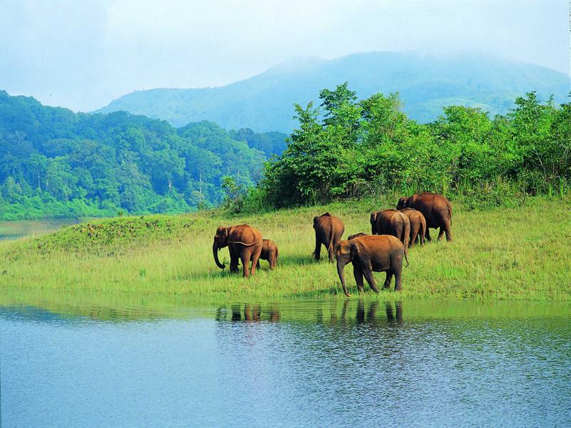 Keralatourexperts